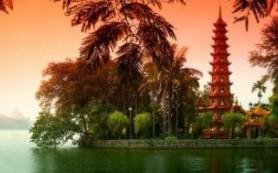 Мировое производство кофе может вырасти благодаря Вьетнаму