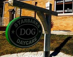 Starbucks и Starbarks — кофе против собак