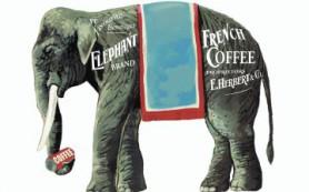 Самый эксклюзивный в мире кофе