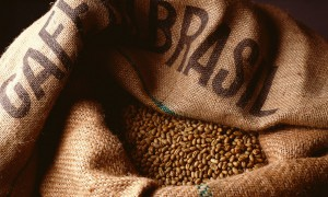 Бразилия собрала рекордный урожай кофе