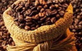 Мировой спрос на кофе в ближайшие 10 лет будет расти на 2-3% в год — эксперт