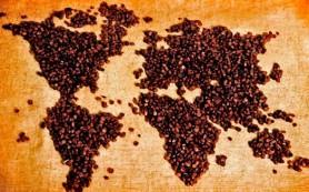 Семь вопросов о кофе, которые вы хотели задать