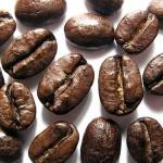 Что мы пьем: кофе или желуди?
