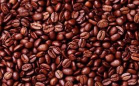 Кофе можно использовать как автомобильное топливо