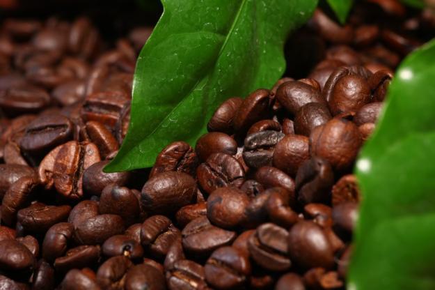 Урожай кофе во Вьетнаме сократится на 30%