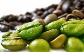 Зеленый кофе – новое средство для похудения?