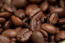 Куба: На острове организуют тематический «Маршрут кофе»