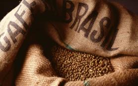 Бразильские производители кофе увеличат прибыль