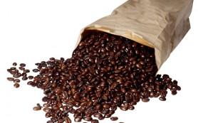 Кофеин нарушает развитие мозга