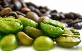 Употребление зеленого кофе проверено временем