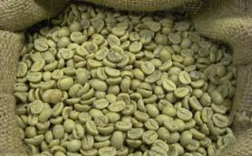 Зелёный кофе с имбирём — хорошее средство для похудения