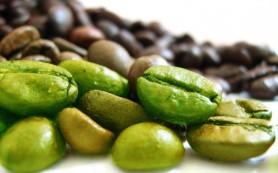Зеленый кофе: лучшее средство для похудения