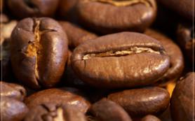 Бодрящий и ароматный напиток — кофе