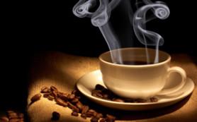 Японские ученые рассказали всю правду о кофе