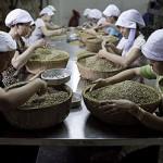 Во Вьетнаме на 30% меньше будет собран урожай кофе