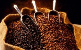 Почему вредно пить много кофе