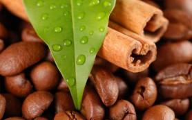 Как кофе укрепляет контуры лица и тела