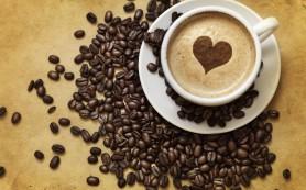 Особенности правильного выбор кофе