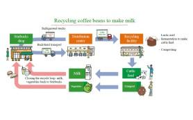 Кофейную гущу будут использовать в качестве корма для крупного рогатого скота