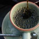 В Центральной Америке кофейные плантации сильно пострадали от грибка