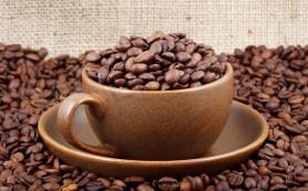 Кофе — не только тонизирующий напиток, в нем кроется масса полезных свойств