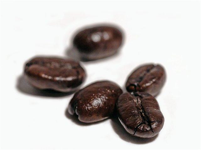 Уничтожение кофейных деревьев в Индии грозит повышением  мировых цен