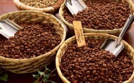Бразилия вынуждена сократить объемы производства кофе