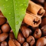 Все особенности влияния кофе на кровяное давление