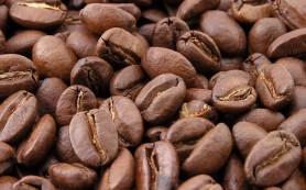 Кофе-вреден или полезен?