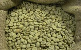 Зеленый кофе и его польза