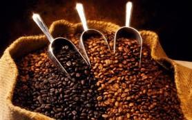 Эксперты ожидают рекордный урожай кофе в Индонезии в следующем сельскохозяйственном сезоне