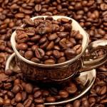 Вьетнам стал вторым в мире среди крупнейших экспортеров кофе