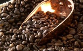 Кофе как средство профилактики рака