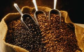 Кофе вылечит облысение