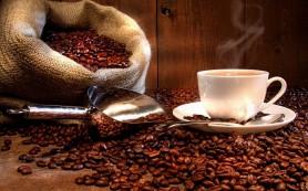 Причины возникновения заболеваний мочеполовой системы может стать кофе