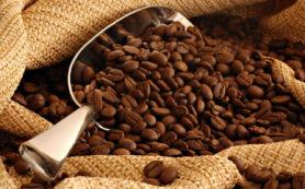Кофе может является причиной ожирения