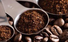 Кофе поможет избавиться от целлюлита