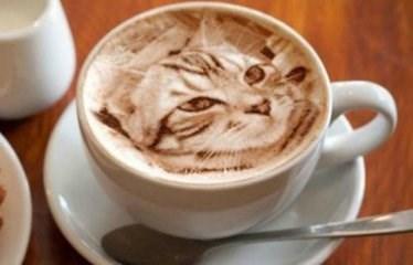 Кофе латте может стать причиной развития ожирения
