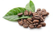 Кофе способствует повышению давления