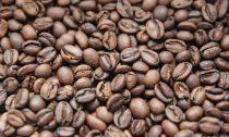 Кофе светлой обжарки полезнее для здоровья