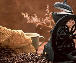 8 качеств кофе, до недавнего времени не известных науке