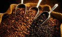 Как правильно выбирать кофе в зернах