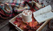 Есть ли в какао кофеин и сколько его содержится — в бобах, в порошке, в масле