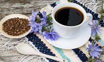 Стоит ли заменить кофе цикорием и что это принесет организму?