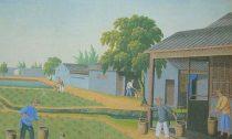 Китайский чай. Возникновение и развитие чайной культуры в Китае.
