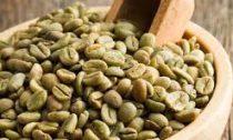 Знакомство с зеленым кофе