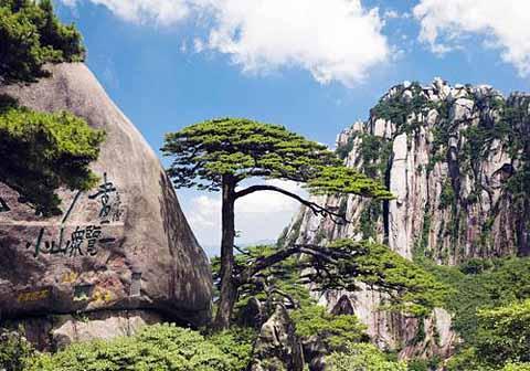 Хуань Шань Мао Фэн — Ворсистые пики с горы Хуань Шань