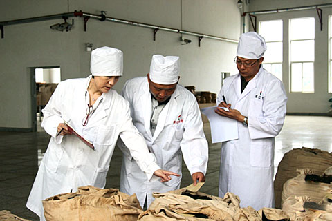 Заводы и фабрики чая пуэр