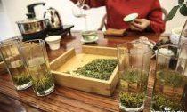 Хранение чая: правила, биохимия и холодильник