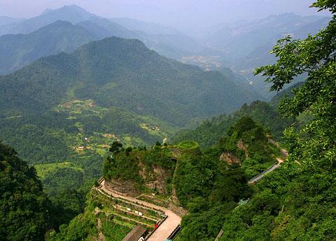 Гуандунские улуны или улуны с гор Феникса